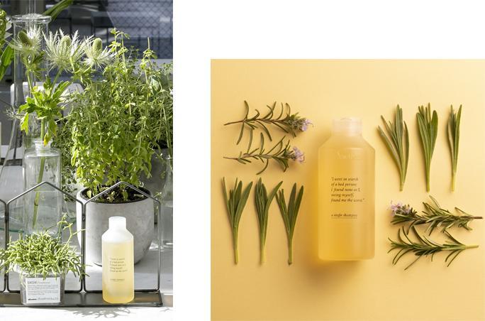 Davines – 100 Prozent CO2-neutrales Shampoo