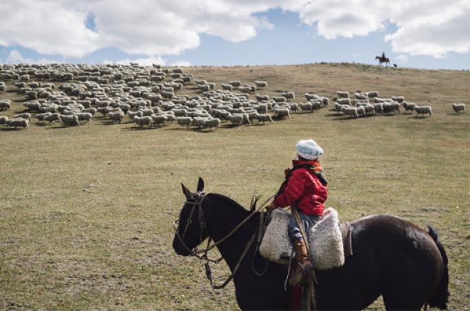 Armedangels: Zu Besuch in Patagonien